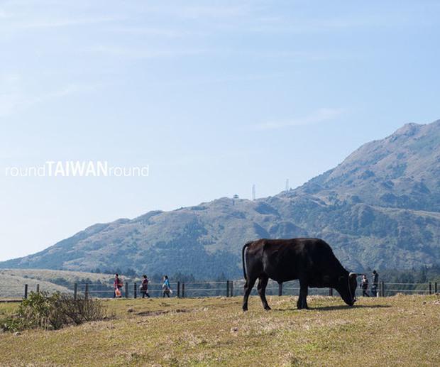 Đi đâu - Chơi gì ở Đài Loan để không bỏ lỡ những thứ hay ho nhất! - Ảnh 7.