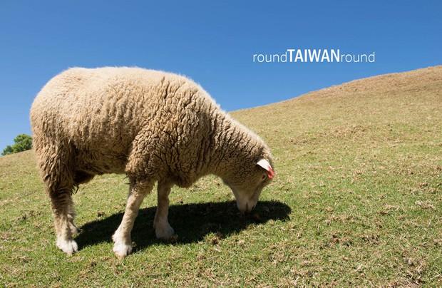 Đi đâu - Chơi gì ở Đài Loan để không bỏ lỡ những thứ hay ho nhất! - Ảnh 6.