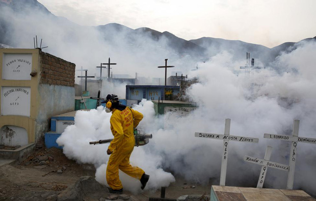 Chùm ảnh: khi virus Zika gieo rắc nỗi kinh hoàng trên toàn thế giới - Ảnh 11.