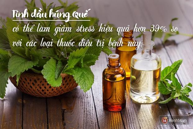 Cách sử dụng tinh dầu để giúp bạn xả stress và hạnh phúc hơn - Ảnh 1.