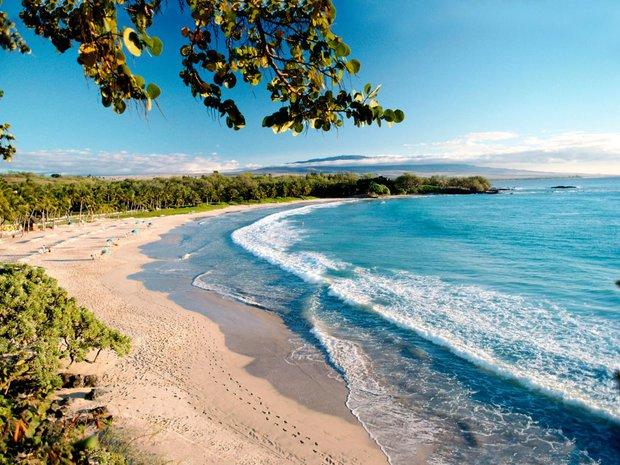 Vì sao có bãi biển nước trong vắt đẹp rực rỡ, biển khác lại đục ngầu? - Ảnh 3.