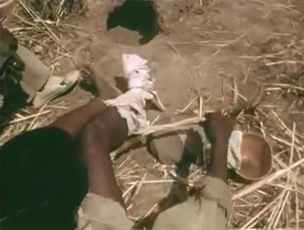 Xem thợ săn Châu Phi dùng chân trần làm mồi nhử bắt trăn khổng lồ - Ảnh 4.