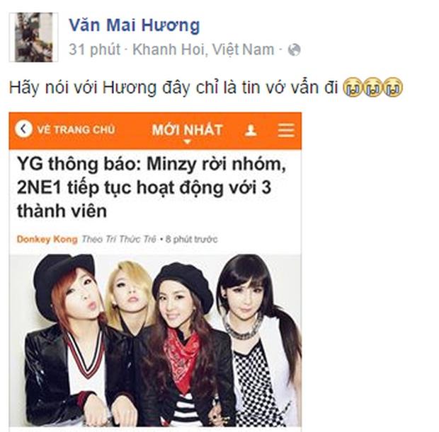 Cộng đồng mạng Việt tiếc nuối, mổ xẻ việc Minzy rời 2NE1 - Ảnh 7.