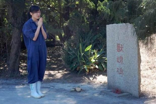 Bi kịch của cô gái trẻ tự tử sau khi giết 700 con chó trong vòng 2 năm - Ảnh 4.