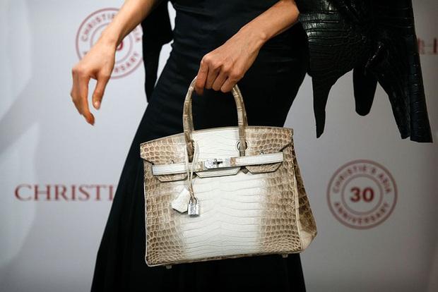 Cá sấu trắng nghi được dùng để làm túi Hermès Birkin quý hiếm đến độ nào? - Ảnh 1.