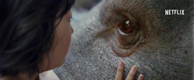 Siêu phẩm hợp tác Mỹ - Hàn đắt đỏ nhất 2017 Okja tung trailer đầu tiên - Ảnh 2.