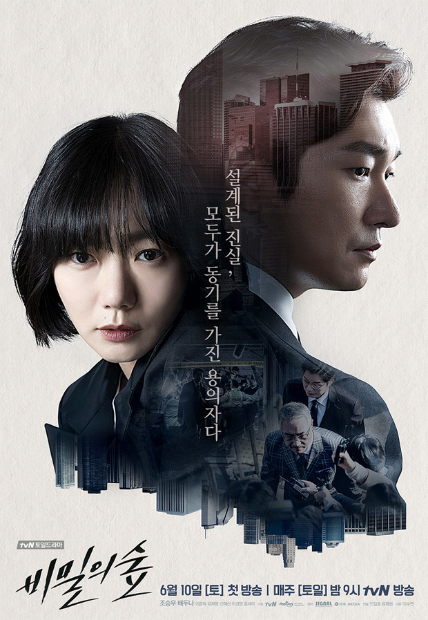 """""""Secret Forest: Tận 2 sao hạng A, quá đủ cho sự trở lại hoàn hảo của tvN! - Ảnh 1."""
