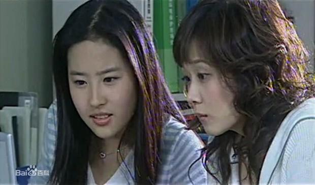 5 vai diễn trên màn ảnh nhỏ từng giúp Lưu Diệc Phi nổi tiếng suốt 15 năm trong nghề - Ảnh 13.