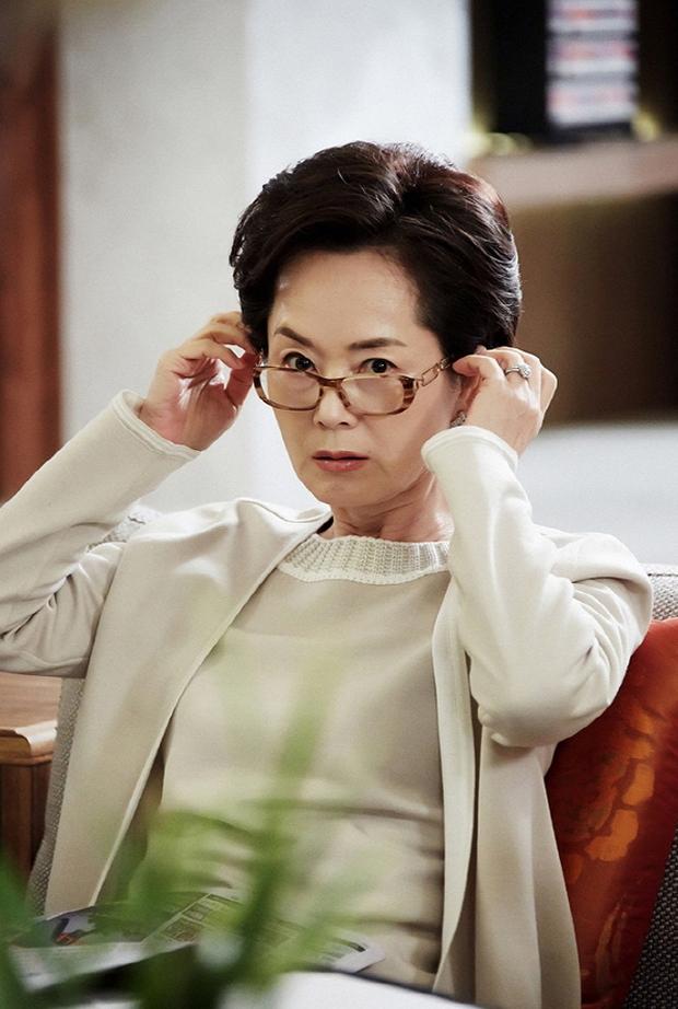 5 vai diễn mà khán giả nhớ mãi về cố diễn viên Mặt Trăng Ôm Mặt Trời Kim Young Ae - Ảnh 2.
