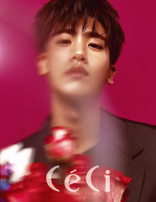 Sau Park Bo Young, người tình màn ảnh mới của Park Hyung Sik là ngọc nữ hàng đầu xứ Hàn! - Ảnh 3.