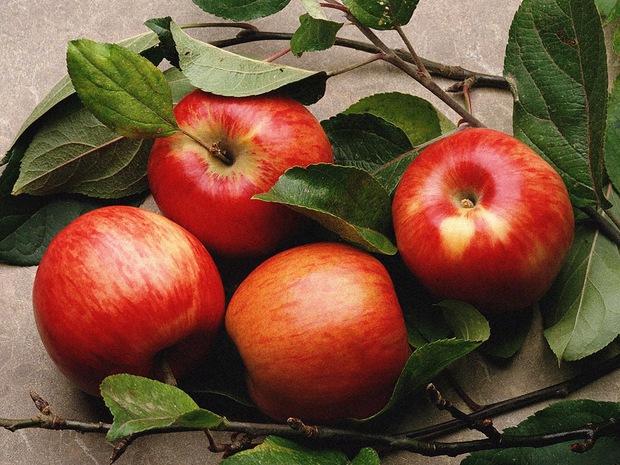 Muốn giải độc gan và ngừa mụn hiệu quả thì không nên bỏ qua 5 loại thực phẩm này - Ảnh 1.