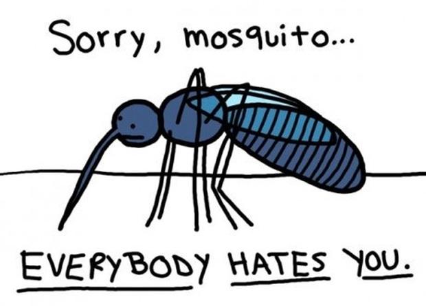 Thời tiết khiến muỗi xuất hiện nhiều hơn, hãy học ngay các cách ngụy trang này để muỗi phớt lờ bạn - Ảnh 1.
