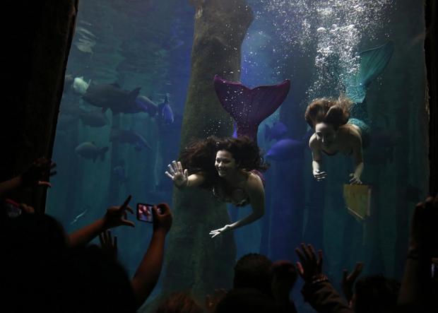 Cuộc sống của những nàng tiên cá Brazil: Giấc mơ thời thơ ấu từ chiếc đuôi thần tiên - Ảnh 8.