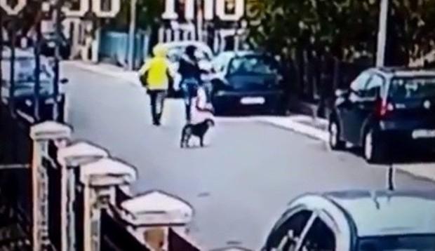 Tưởng ngon ăn giật được túi của người phụ nữ, tên cướp bị chú chó anh hùng tấn công chạy tóe khói - Ảnh 2.