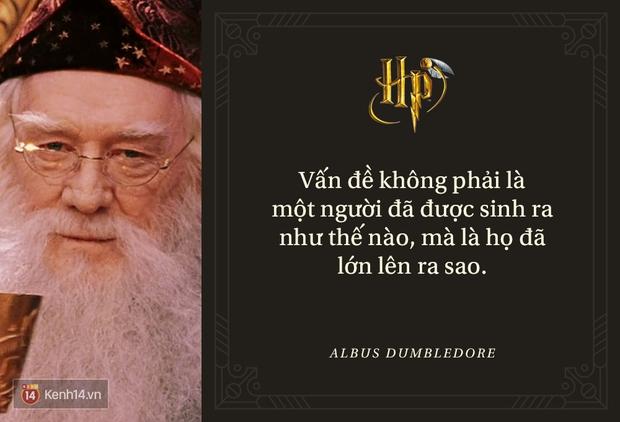 Đã 2 thập kỷ nhưng fan Harry Potter vẫn luôn nằm lòng những trích dẫn cùng mình lớn lên trong từng trang sách! - Ảnh 21.
