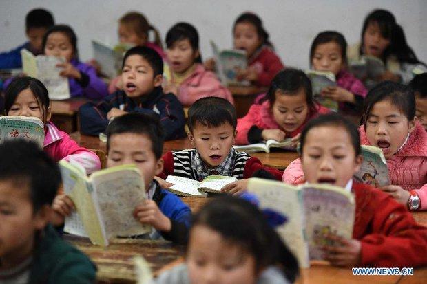 Ngày càng có nhiều người Trung Quốc mắc chứng sợ trẻ con - Ảnh 1.