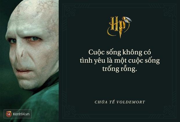 Đã 2 thập kỷ nhưng fan Harry Potter vẫn luôn nằm lòng những trích dẫn cùng mình lớn lên trong từng trang sách! - Ảnh 31.