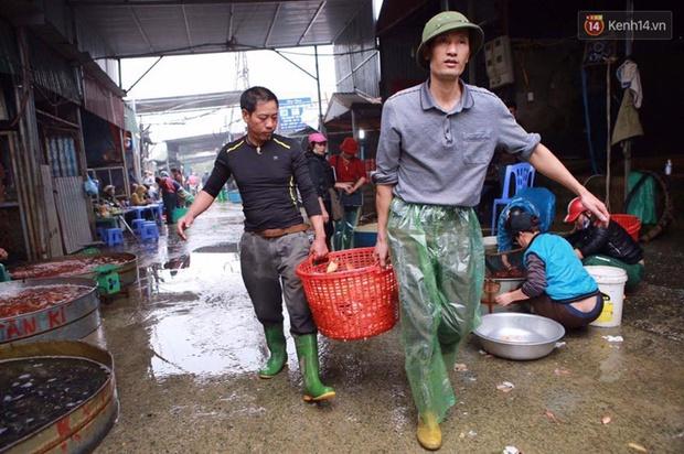 Chợ cá chép tấp nập trước ngày tiễn Táo quân về trời - Ảnh 1.