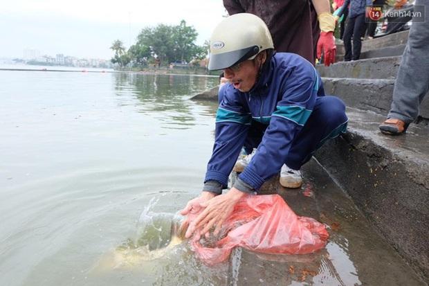 Người Hà Nội thả cá chép khủng tiễn Táo quân về trời - Ảnh 2.