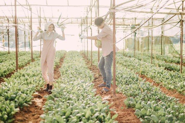 Chỉ cần yêu nhau thật nhiều thì ảnh cưới chụp ở... vườn rau cũng khiến người ta xuýt xoa - Ảnh 7.