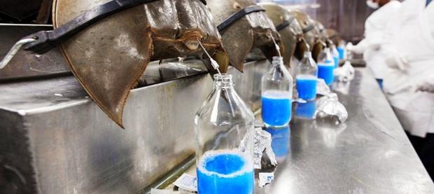 7 chất lỏng đắt đỏ nhất hành tinh - có những cái bạn vẫn dùng hàng ngày đó - Ảnh 4.