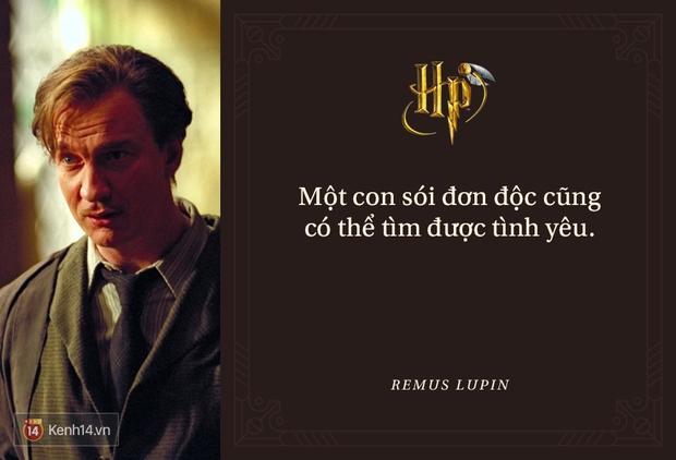 Đã 2 thập kỷ nhưng fan Harry Potter vẫn luôn nằm lòng những trích dẫn cùng mình lớn lên trong từng trang sách! - Ảnh 33.