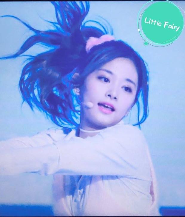 Buộc tóc lên quá xinh, Tzuyu (TWICE) làm các fan cứ ngẩn ngơ - Ảnh 8.