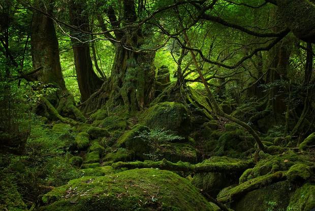 10 địa điểm có thật từng xuất hiện trong phim hoạt hình của Ghibli Studio - Ảnh 18.