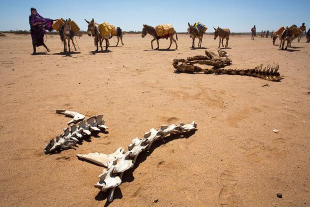 Ngày Nước thế giới, nhìn lại những bức hình ám ảnh về thực trạng khan hiếm nước trên toàn thế giới - Ảnh 2.