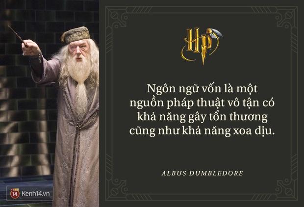 Đã 2 thập kỷ nhưng fan Harry Potter vẫn luôn nằm lòng những trích dẫn cùng mình lớn lên trong từng trang sách! - Ảnh 3.