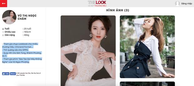 Sau ồn ào với Decao, Vũ Ngọc Châm đã đăng ký thi The Look 2017 - Ảnh 3.