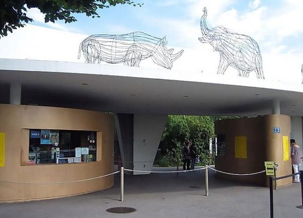 Thụy Sĩ: Nhiều vật nuôi bị vườn thú sử dụng làm đồ ăn cho hổ - Ảnh 1.
