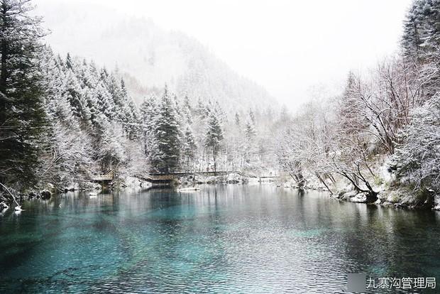 Quên Cửu Trại Câu lá vàng đi, thiên đường hạ giới mùa đông đẹp không khác gì chốn bồng lai tiên cảnh - Ảnh 3.