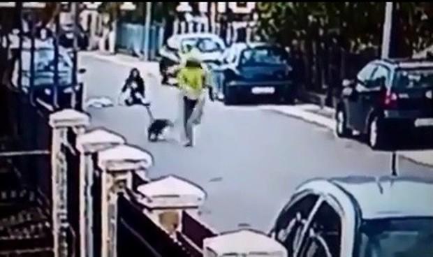 Tưởng ngon ăn giật được túi của người phụ nữ, tên cướp bị chú chó anh hùng tấn công chạy tóe khói - Ảnh 3.