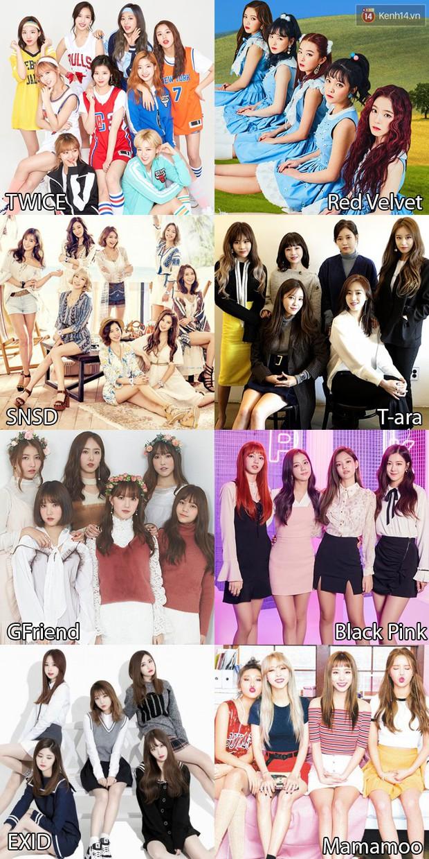 Bình chọn sao ngoại được fan Việt yêu thích nhất 2017: SNSD hay Black Pink, Song - Song hay Kim Tae Hee - Bi Rain mới hot hơn? - Ảnh 2.