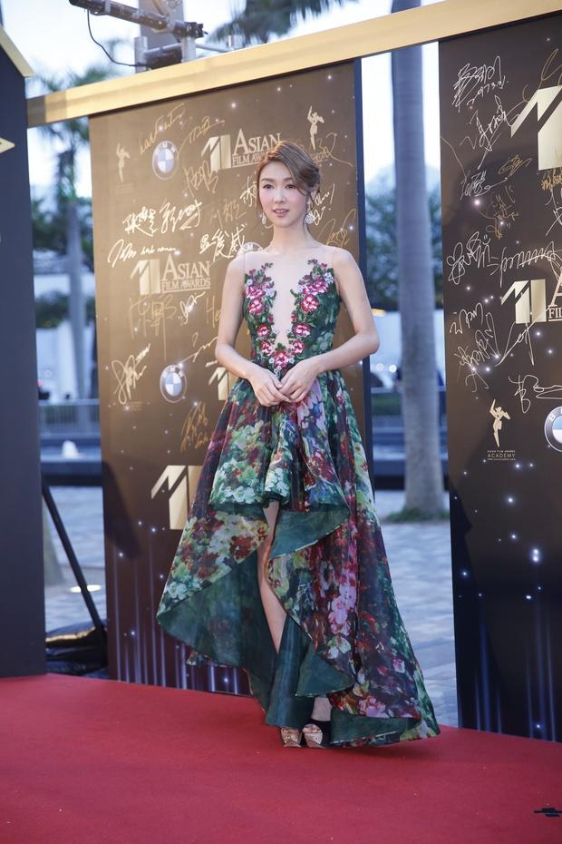 Phạm Băng Băng chiếm hết ánh đèn sân khấu đêm trao giải phim châu Á 2017 - Ảnh 14.