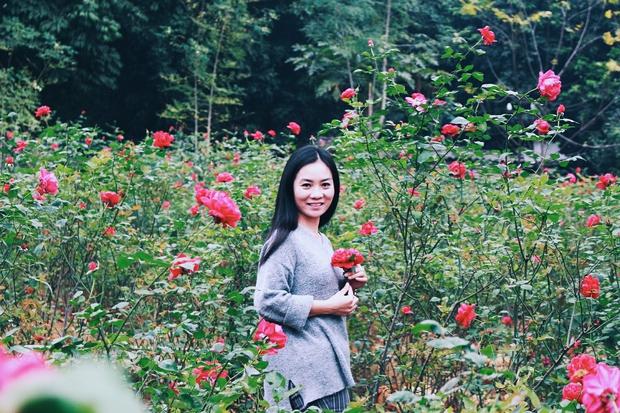 Con đường khởi nghiệp với 20.000 gốc hoa hồng sạch của nữ luật sư Hà Nội - Ảnh 6.