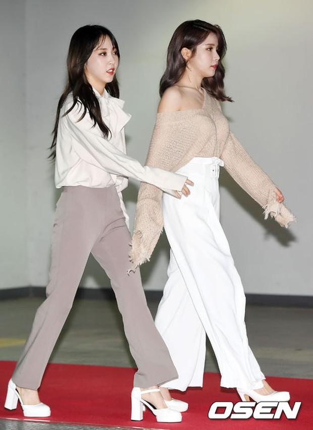 Thảm đỏ Asia Song Festival: Đông Nhi được báo Hàn khen ngợi hết lời, sánh bước bên loạt sao thế giới - Ảnh 10.