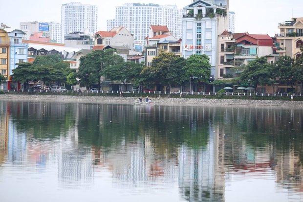 Hà Nội: Cá chết nổi trắng mặt hồ Hoàng Cầu - Ảnh 1.