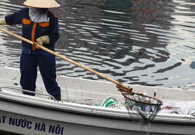Hà Nội: Cá chết nổi trắng mặt hồ Hoàng Cầu - Ảnh 7.