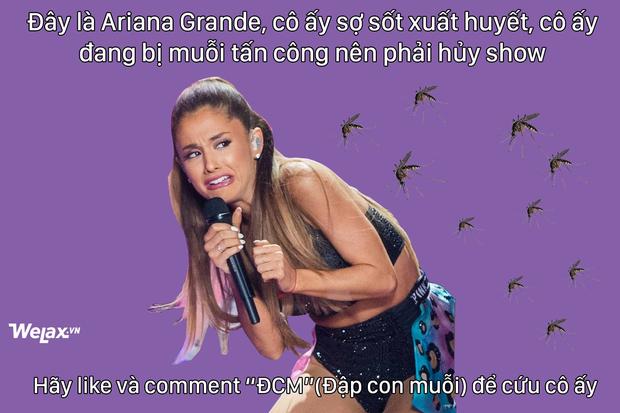 Ảnh chế hot nhất mạng xã hội hôm nay: Ariana Grande hủy show vì... dịch sốt xuất huyết! - Ảnh 1.