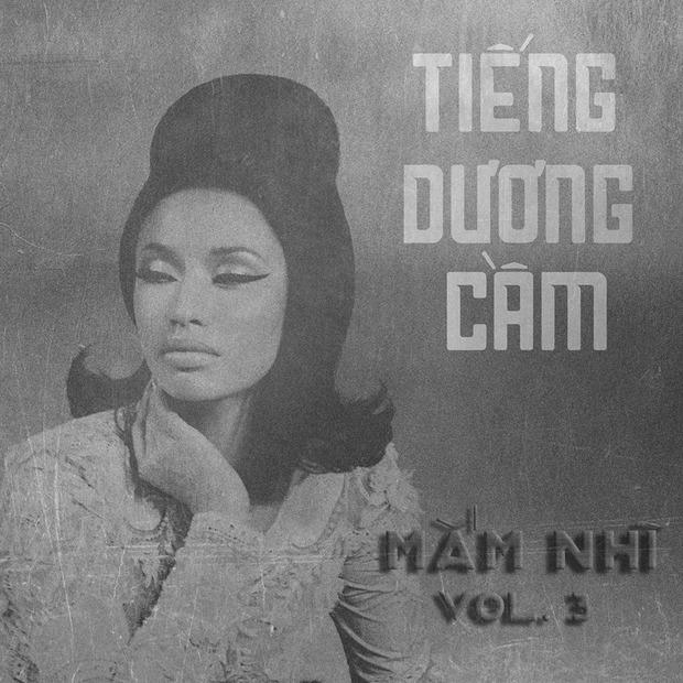 Bật cười khi Taylor Swift, Lady Gaga... hóa cô Ba Sài Gòn trên bìa album! - Ảnh 3.