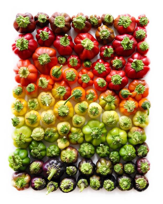 Bộ sưu tập ảnh đầy sắc màu cho thấy đỉnh cao của nghệ thuật sắp xếp - Ảnh 1.