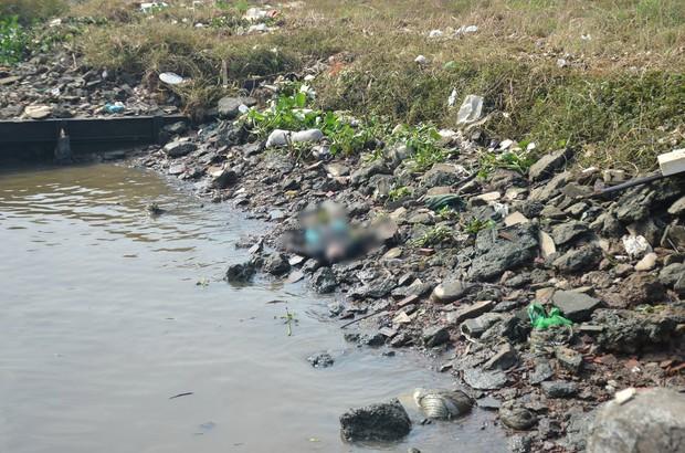Phát hiện thi thể người phụ nữ trôi trên sông Sài Gòn - Ảnh 2.