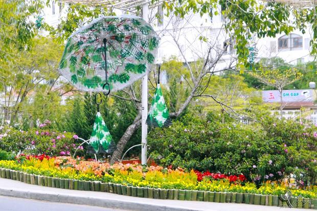 Đường hoa rực rỡ và đẹp mắt trước thềm Festival hoa Đà Lạt thu hút khách du lịch - Ảnh 5.