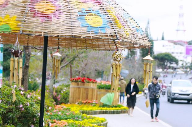 Đường hoa rực rỡ và đẹp mắt trước thềm Festival hoa Đà Lạt thu hút khách du lịch - Ảnh 6.