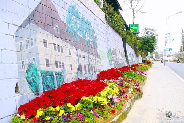 Đường hoa rực rỡ và đẹp mắt trước thềm Festival hoa Đà Lạt thu hút khách du lịch - Ảnh 7.