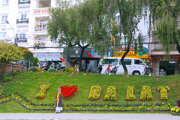 Đường hoa rực rỡ và đẹp mắt trước thềm Festival hoa Đà Lạt thu hút khách du lịch - Ảnh 9.