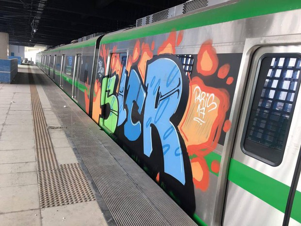 Cảnh sát hình sự vào cuộc truy tìm người bôi bẩn đoàn tàu đường sắt trên cao Cát Linh - Hà Đông bằng hình vẽ graffiti - Ảnh 2.