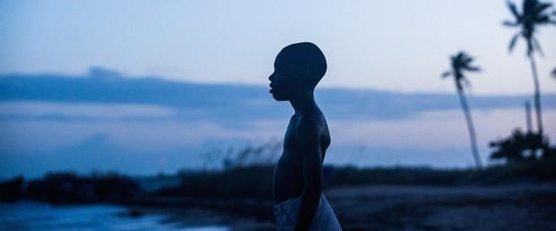 10 bộ phim không thể không xem trước Lễ trao giải Oscar lần thứ 89 - Ảnh 6.
